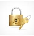 Locked padlock gold and key vector