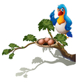 A parrot at the branch of a tree with a nest vector