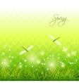 Green grass dragonfly season background vector