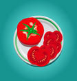 Tomato on a plate with slices vector