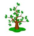 Oak trees vector