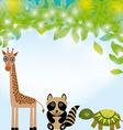 Giraffe raccoon and turtle funny cartoon animals vector