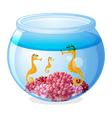 A jar with three seahorses vector