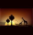 Sunrise over the african savanna giraffe and trees vector