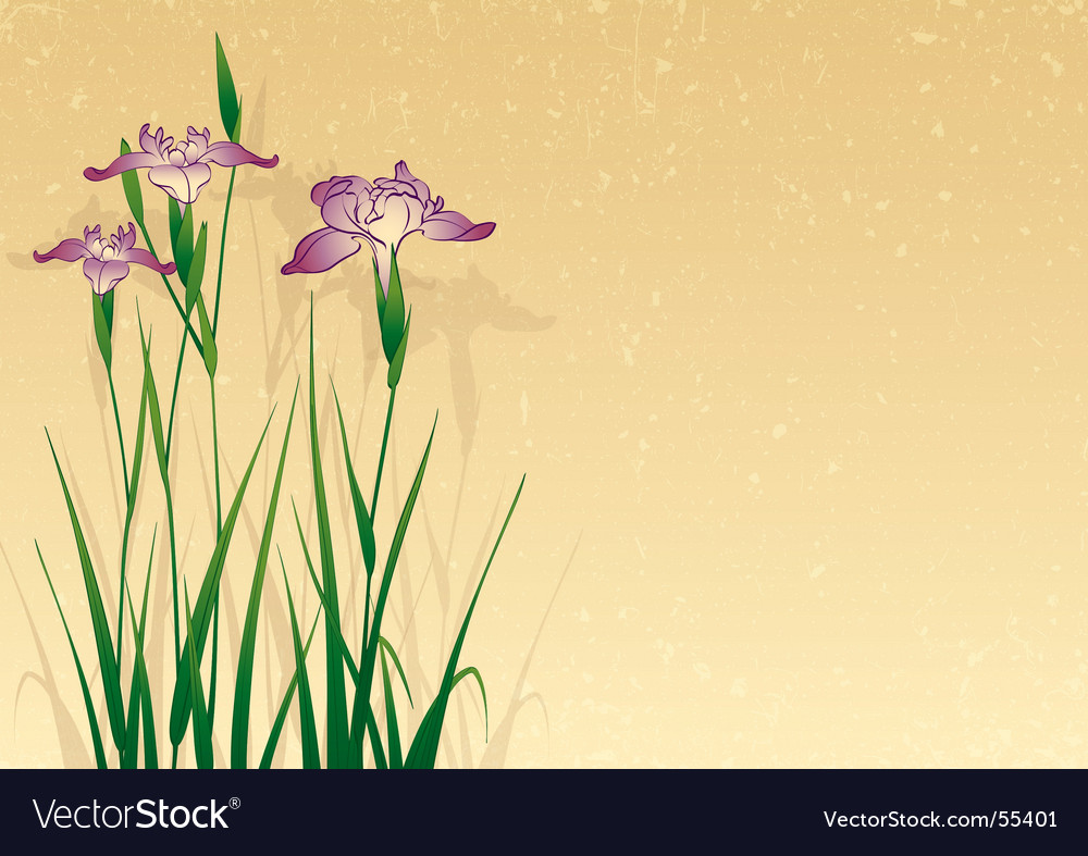Iris background vector | Price: 1 Credit (USD $1)