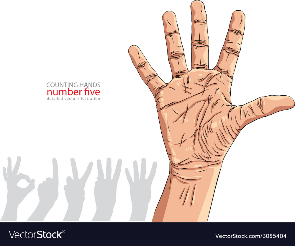 Numbers hand signs set number five detailed vector | Price: 1 Credit (USD $1)