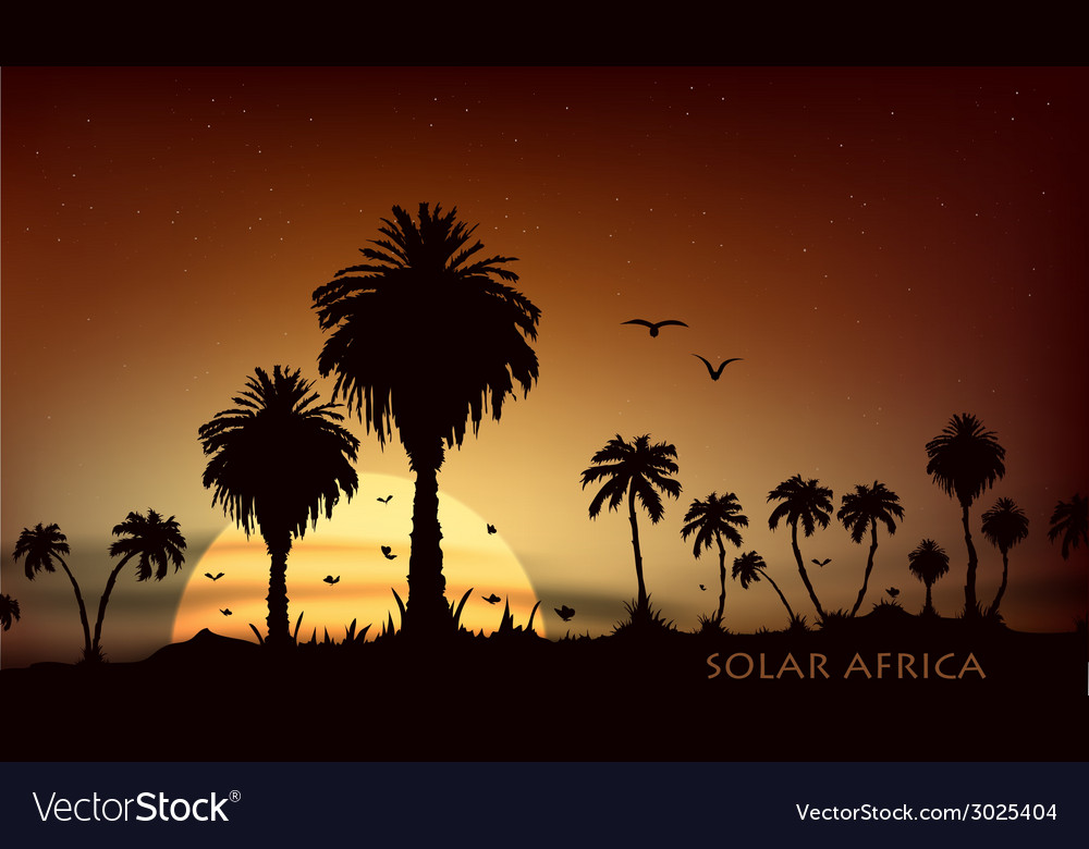Sunsets over the savanna with palm trees vector | Price: 1 Credit (USD $1)