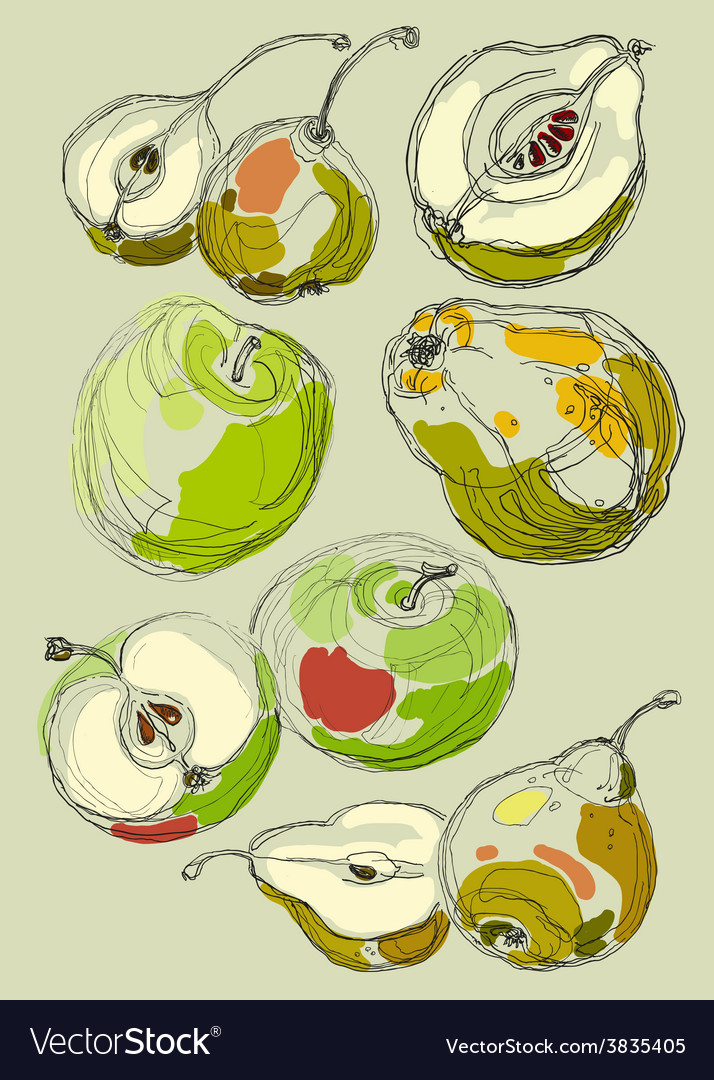 Fruit set hand drawn apples and pears vector | Price: 1 Credit (USD $1)