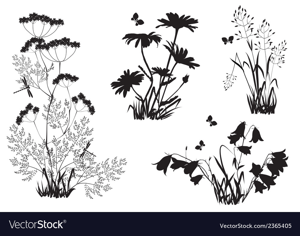Silhouettes of flowers and herbs vector | Price: 1 Credit (USD $1)
