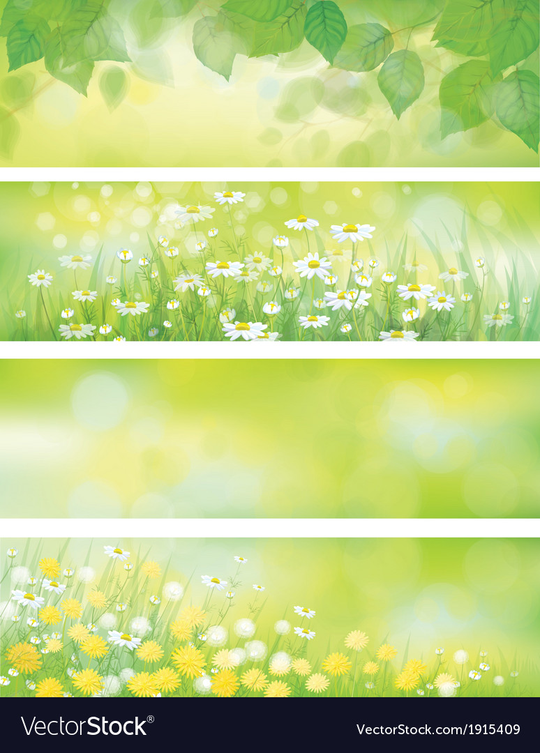 Spring floral banners vector | Price: 1 Credit (USD $1)