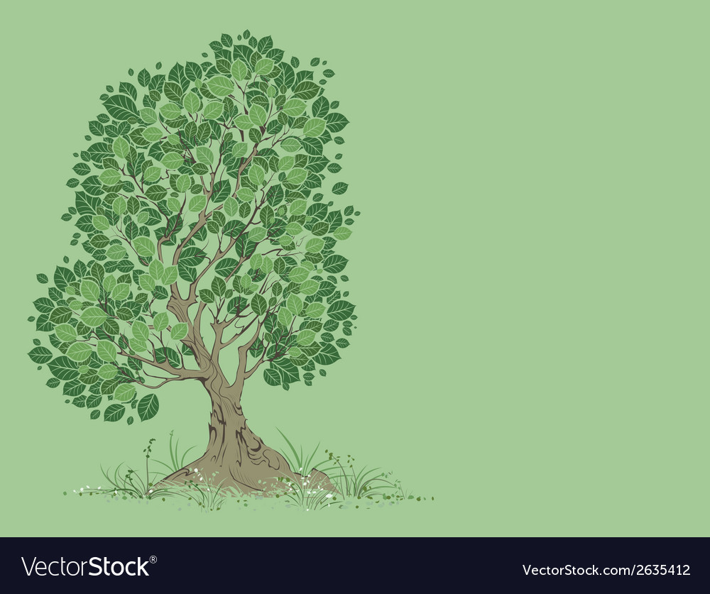 Tree on a green background vector | Price: 1 Credit (USD $1)