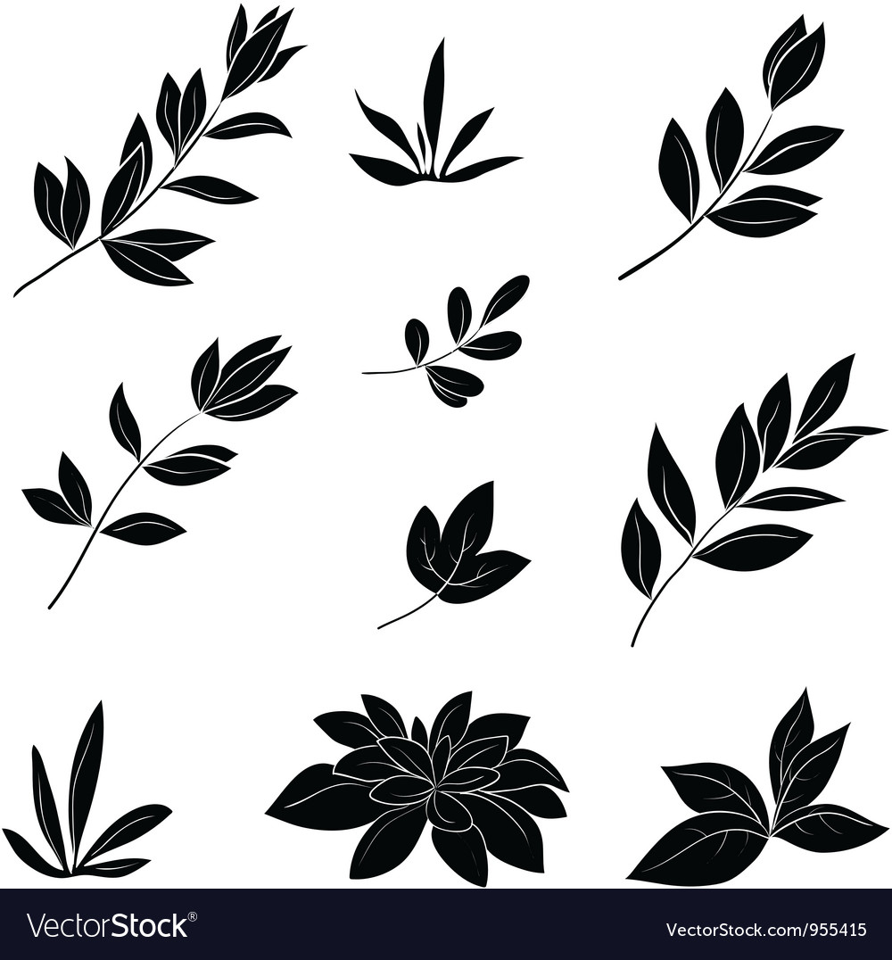 Leaves black silhouettes vector | Price: 1 Credit (USD $1)