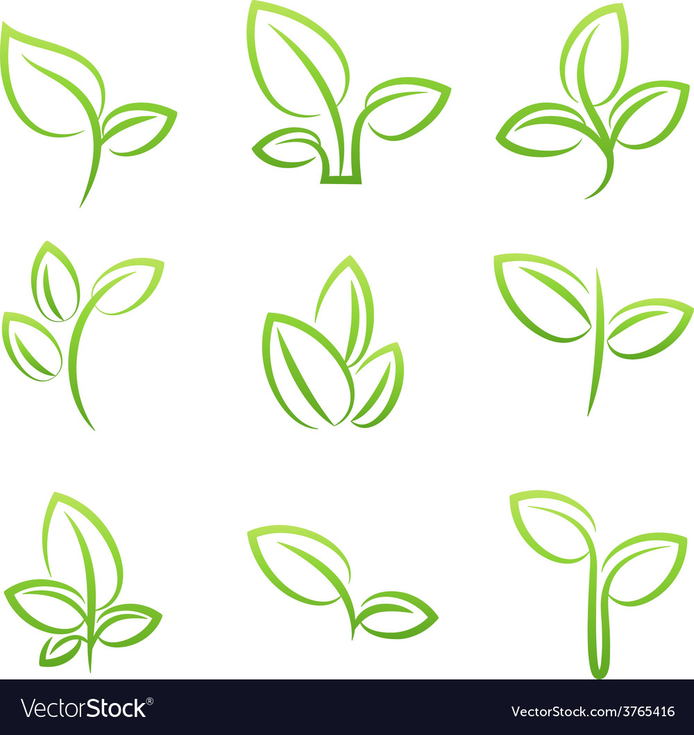 Leaf simbol set of green leaves design elements vector