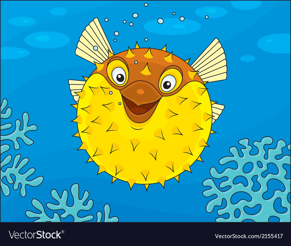 Puffer fish vector | Price: 1 Credit (USD $1)