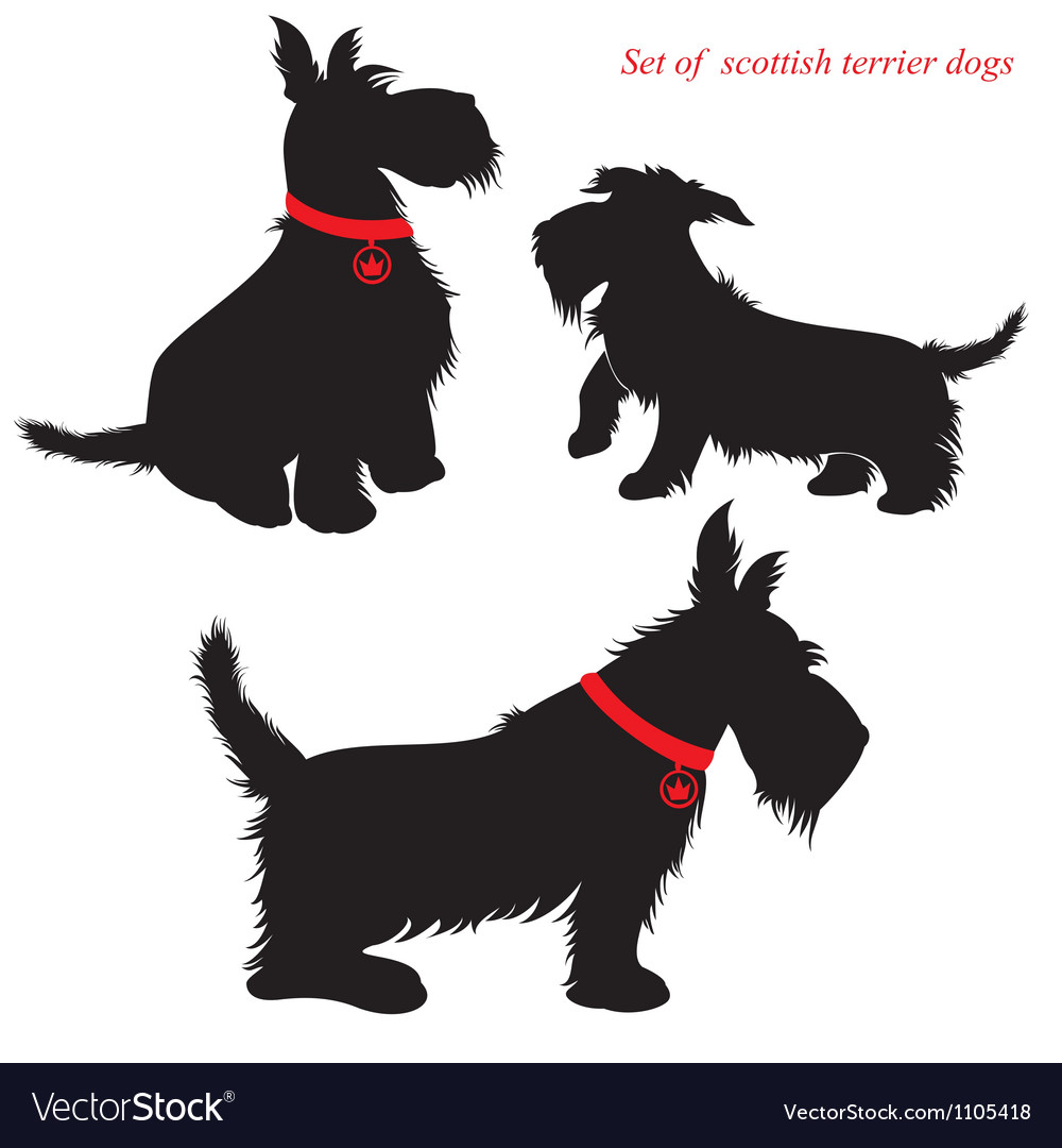 Scottish terrier dog silhouettes vector | Price: 1 Credit (USD $1)