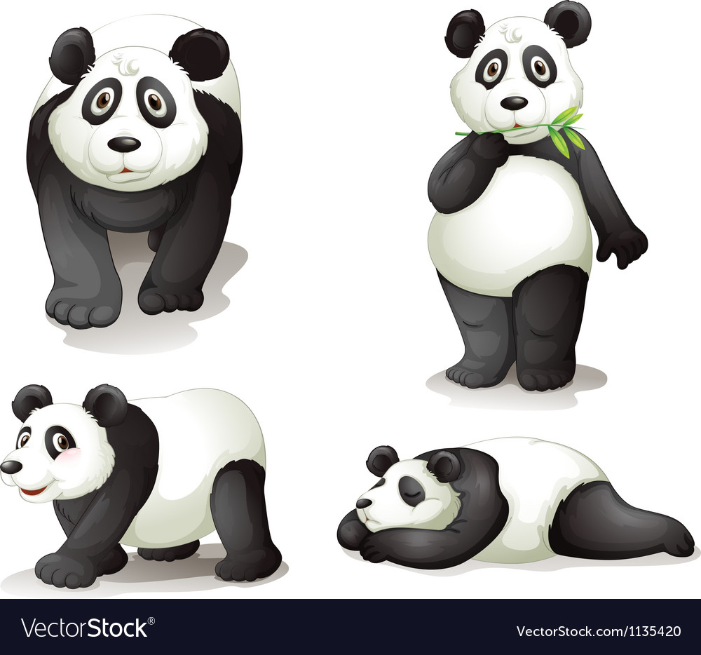 A panda vector | Price: 1 Credit (USD $1)