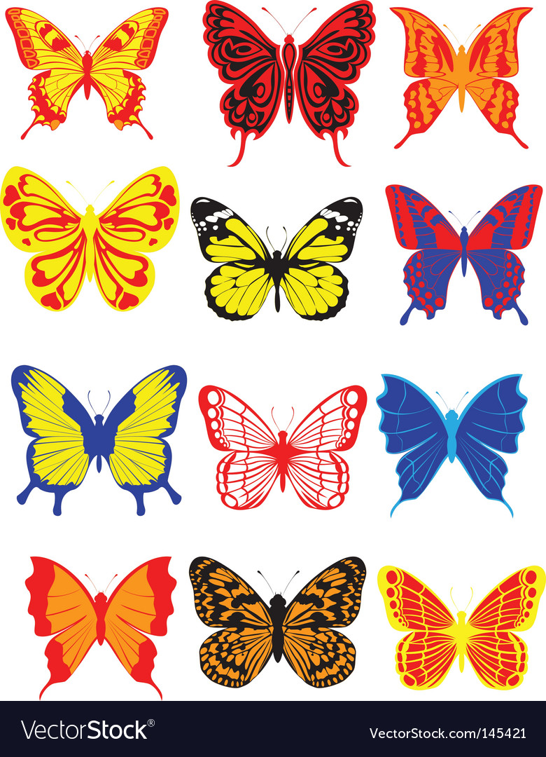 Butterfly vector | Price:  Credit (USD $)