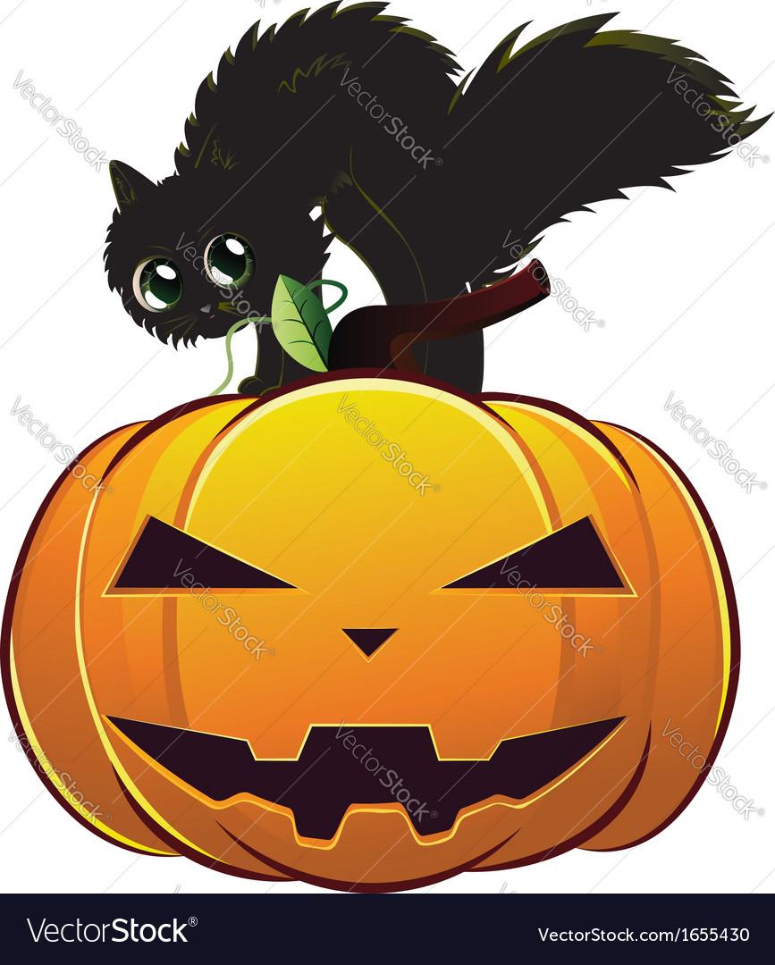Black cat on pumpkin vector | Price: 1 Credit (USD $1)