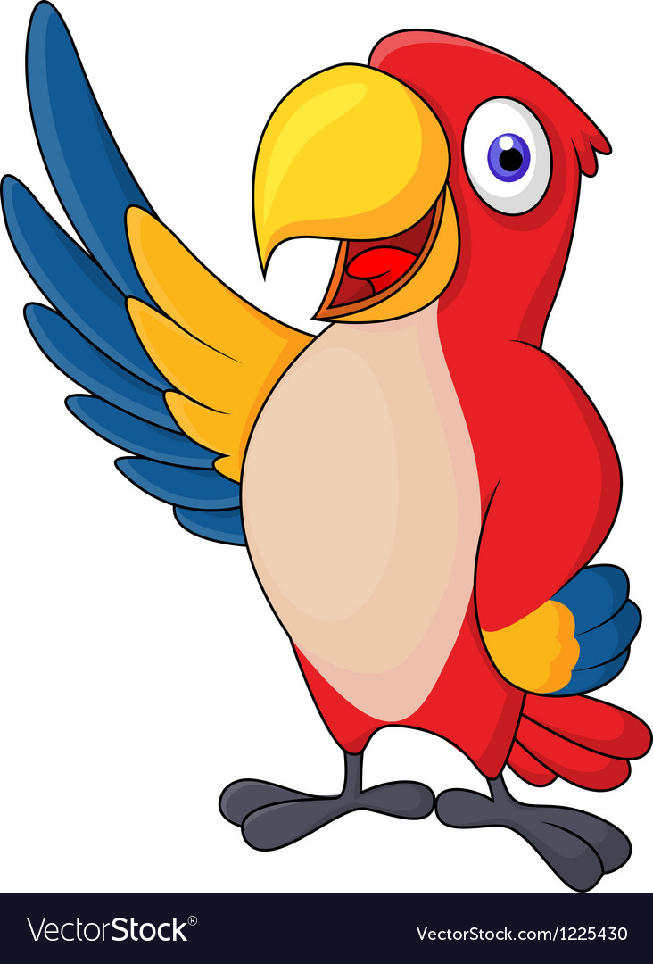 Macaw bid carton waving vector | Price: 3 Credit (USD $3)