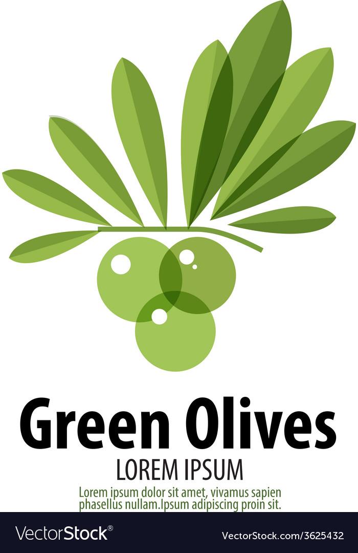 Green olives logo design template harvest or food vector   Price: 1 Credit (USD $1)
