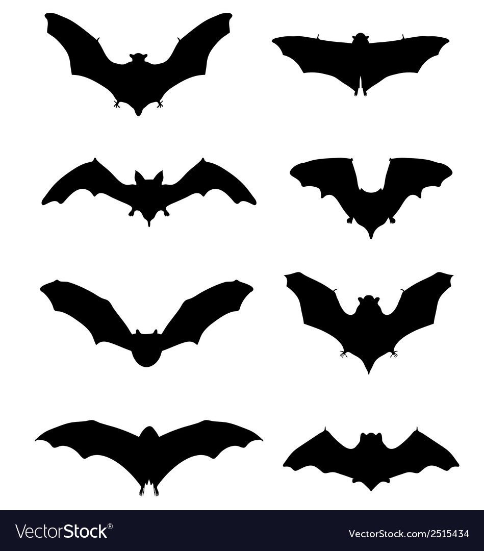 Bats 2 vector | Price: 1 Credit (USD $1)