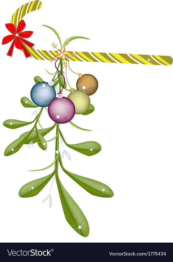 Green mistletoe with red bow and candy cane vector | Price: 1 Credit (USD $1)