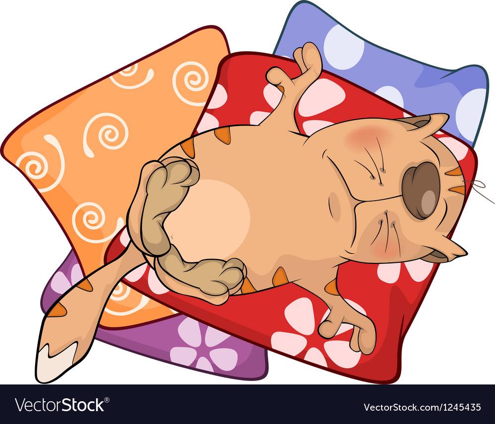 Cat on pillows cartoon vector | Price: 3 Credit (USD $3)