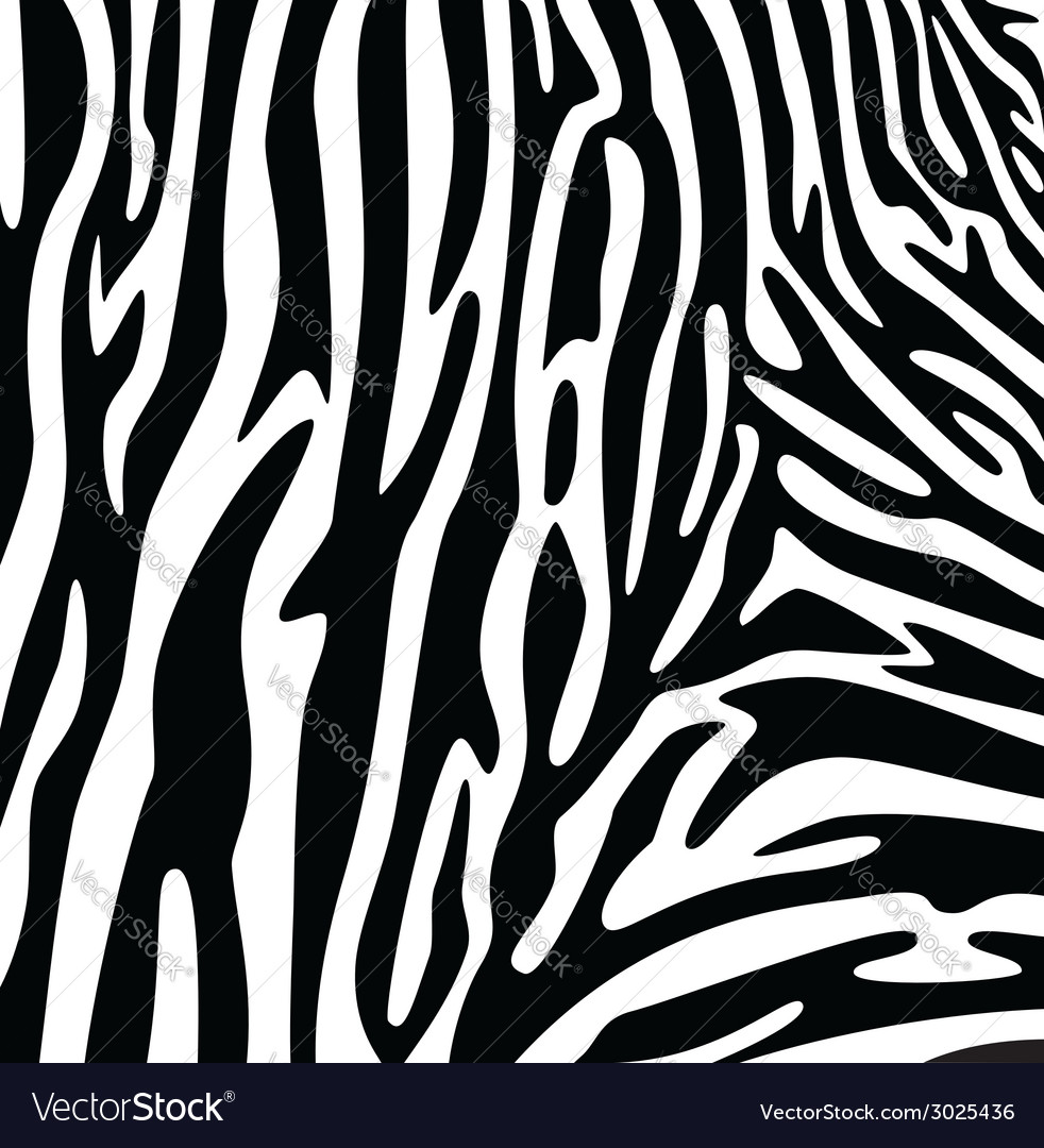 Abstract skin texture of zebra vector | Price: 1 Credit (USD $1)