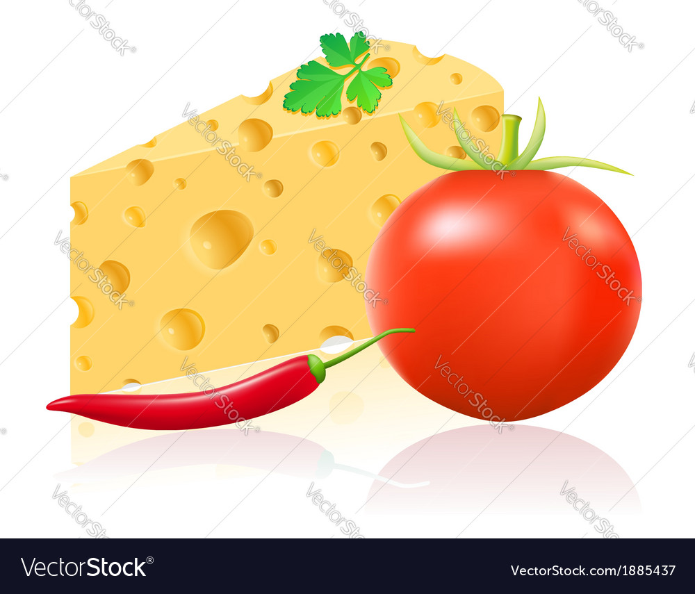 Still life with cheese 01 vector | Price: 1 Credit (USD $1)