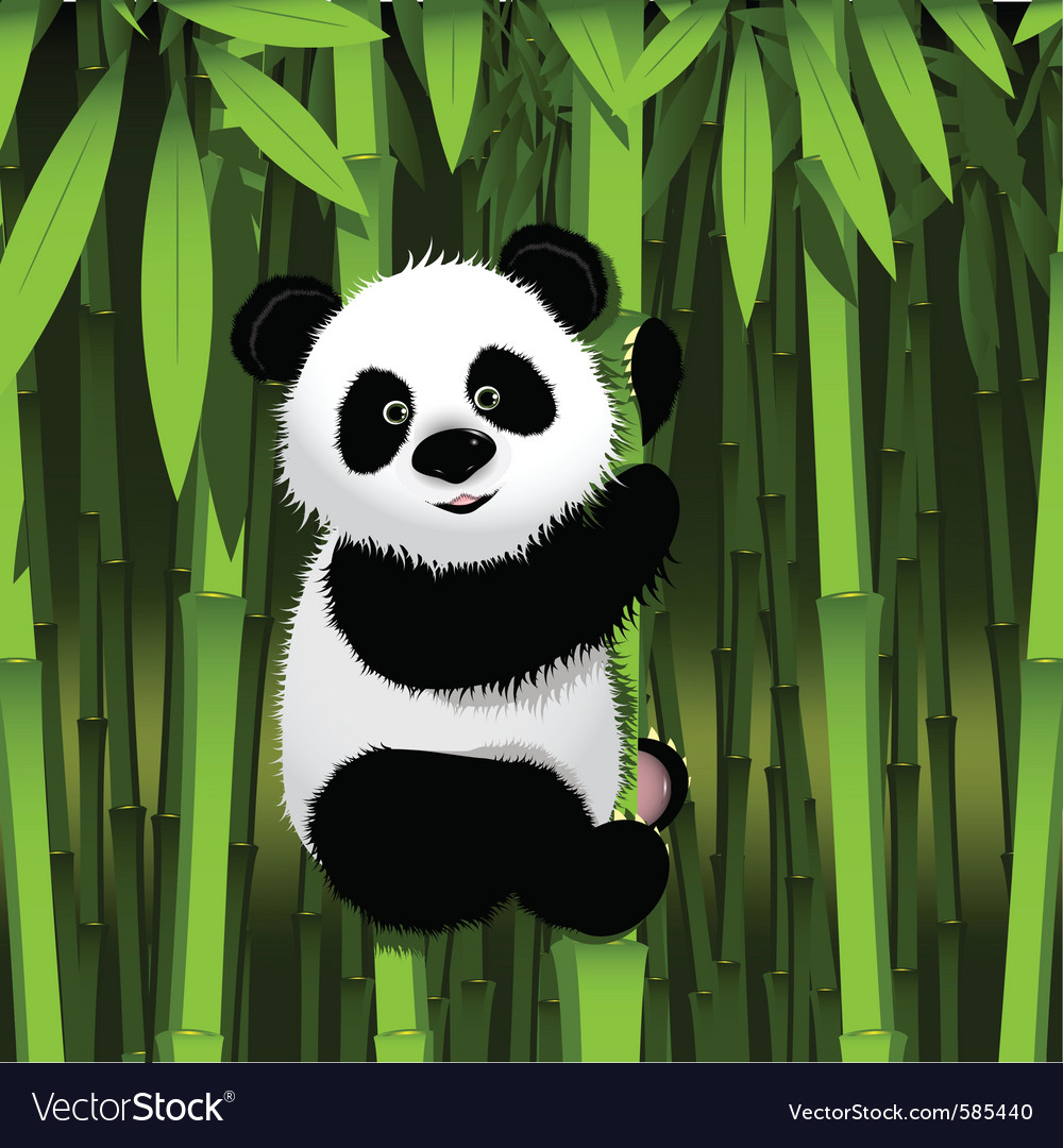 Curious panda vector | Price: 3 Credit (USD $3)