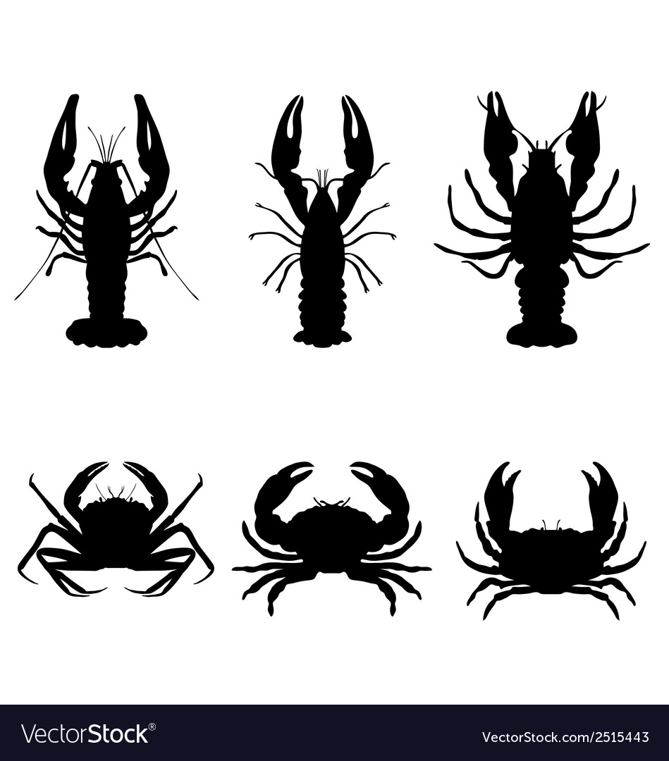 Crawfish and crab vector | Price: 1 Credit (USD $1)
