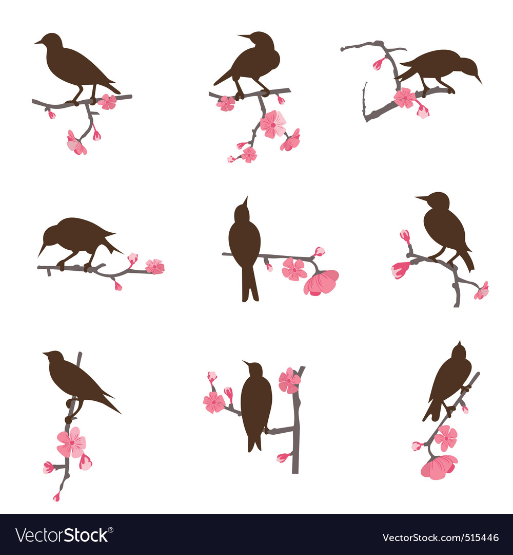 Set from birds vector
