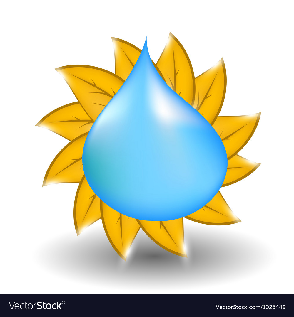 Water drop with yellow leaves in form of sun vector | Price: 1 Credit (USD $1)