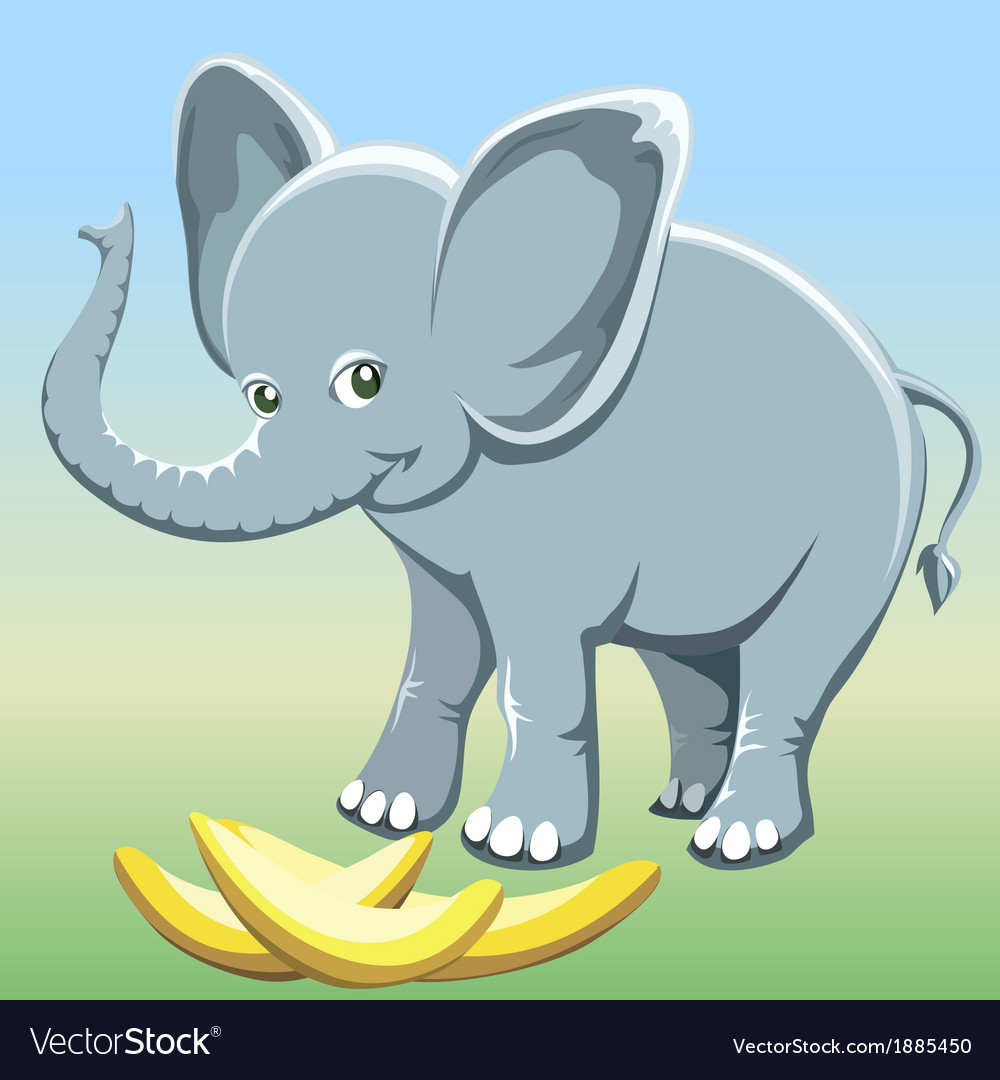 The baby elephant vector   Price: 1 Credit (USD $1)