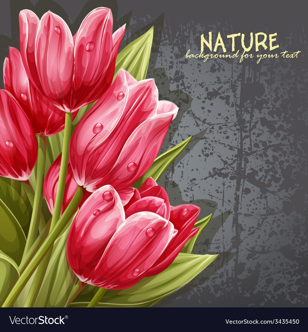 Preview background bouquet of pink tulips for your vector | Price: 3 Credit (USD $3)