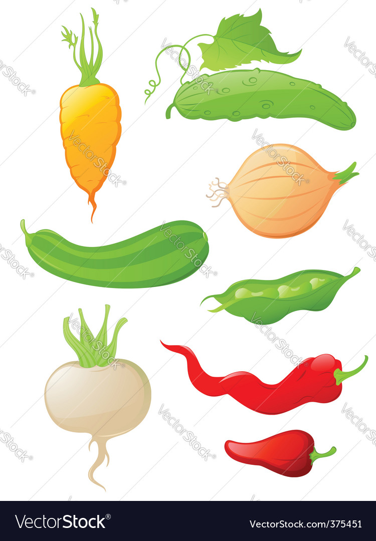 Set of glossy vegetable icons vector | Price: 1 Credit (USD $1)