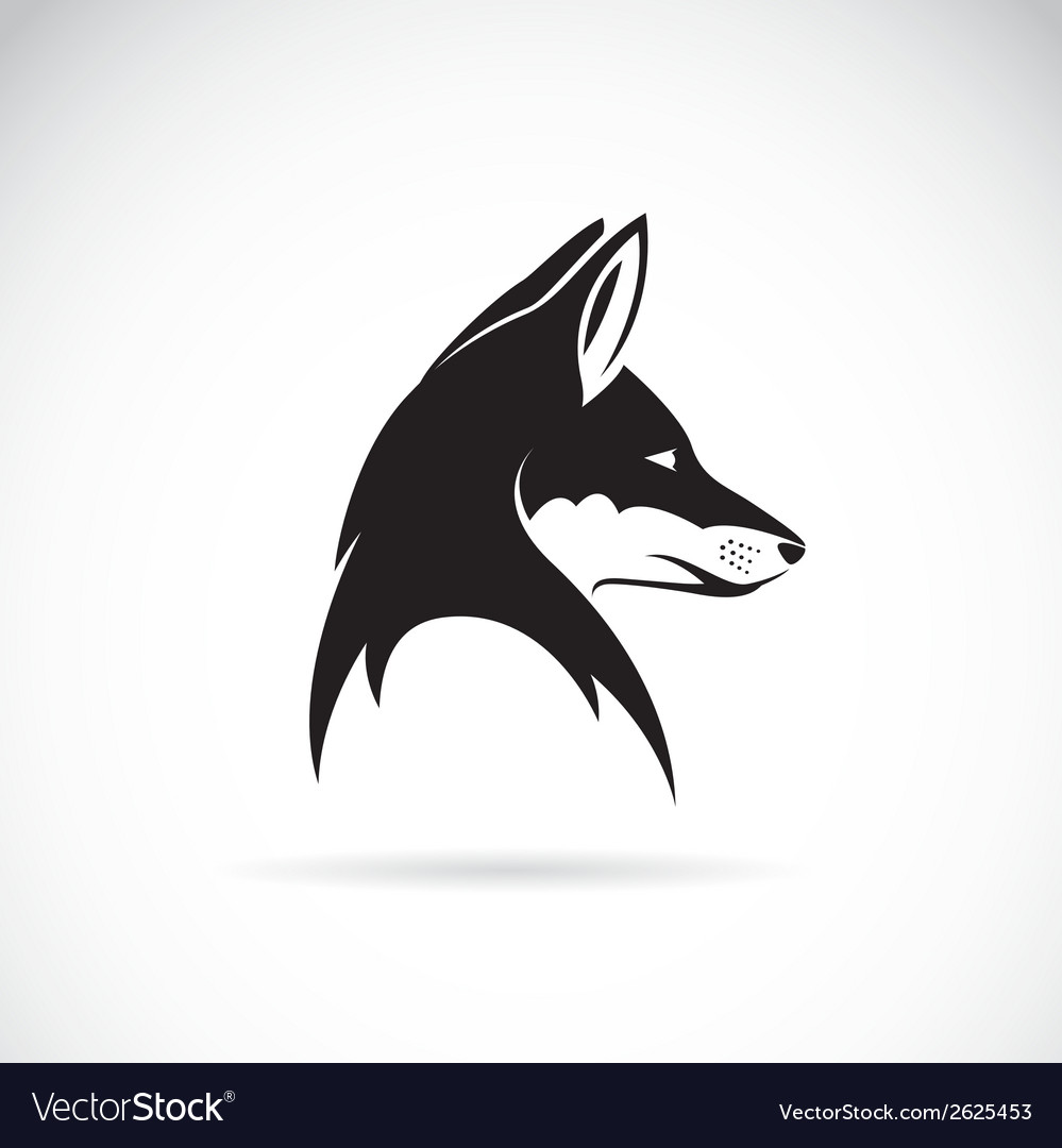 Image of an fox head vector | Price: 1 Credit (USD $1)