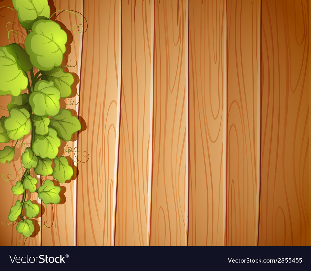 A wooden wall with a vineplant vector | Price: 1 Credit (USD $1)