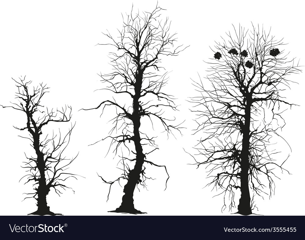 Trees silhouettes vector | Price: 1 Credit (USD $1)