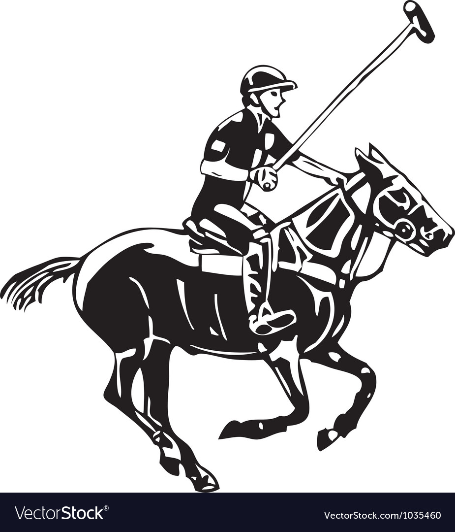 Polo horse and player vector | Price: 1 Credit (USD $1)