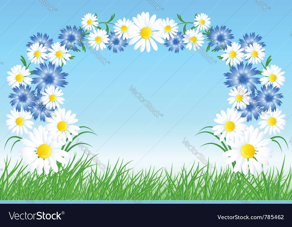 Cornflowers and daisy vector | Price: 1 Credit (USD $1)