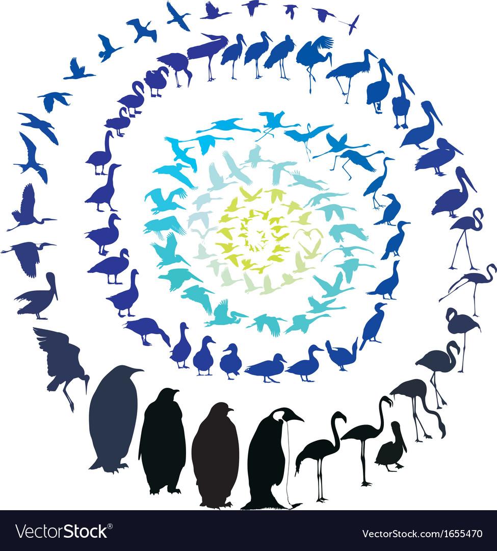 Birds in spiral vector   Price: 1 Credit (USD $1)