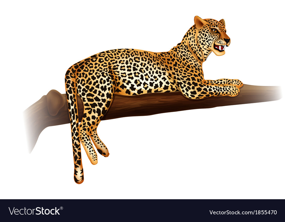 Cheetah vector | Price: 3 Credit (USD $3)