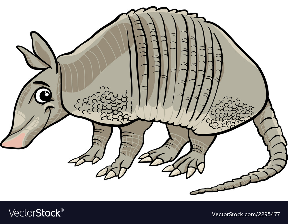 Armadillo animal cartoon vector | Price: 1 Credit (USD $1)