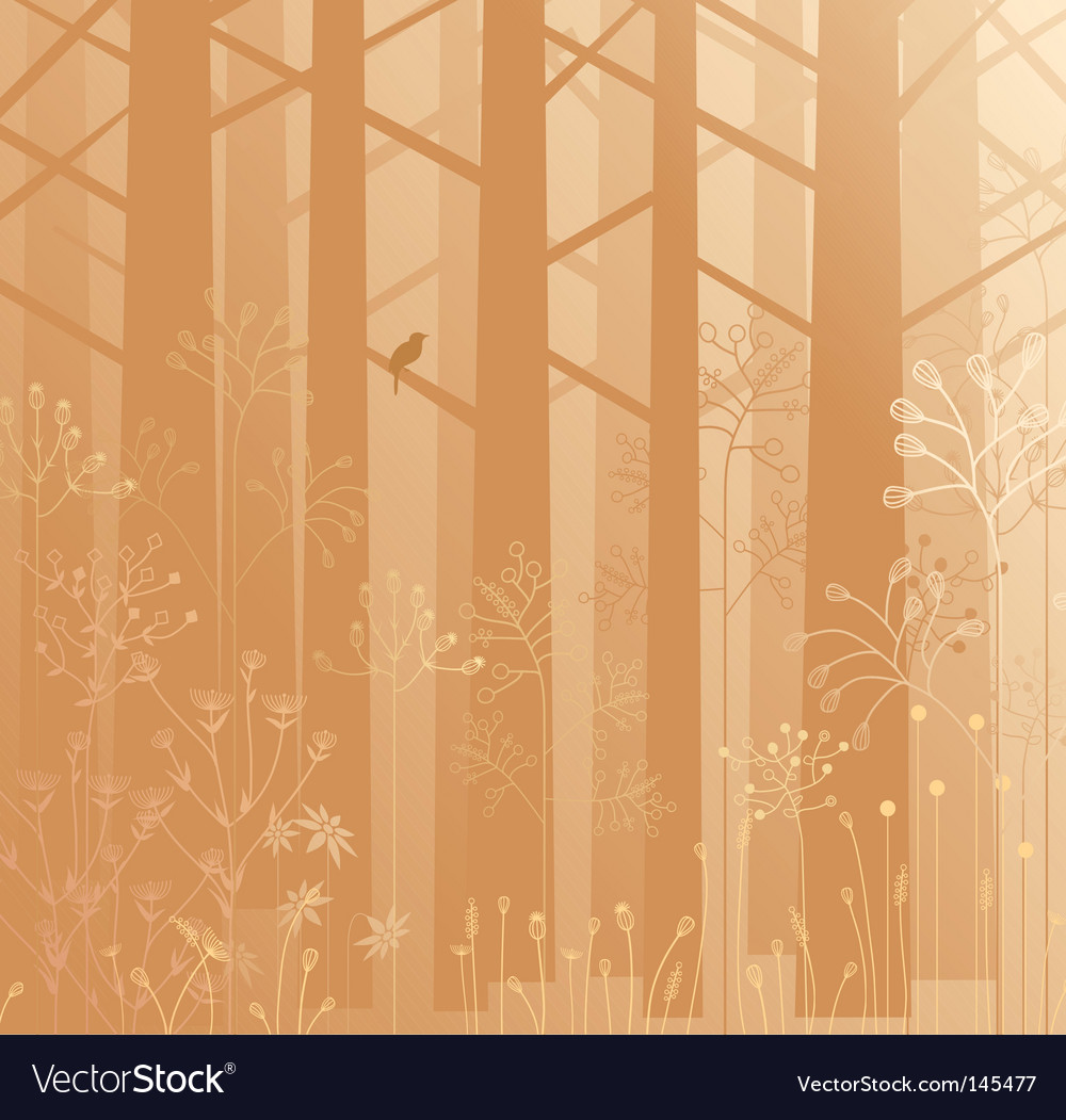 Undergrowth in the mist vector | Price: 1 Credit (USD $1)