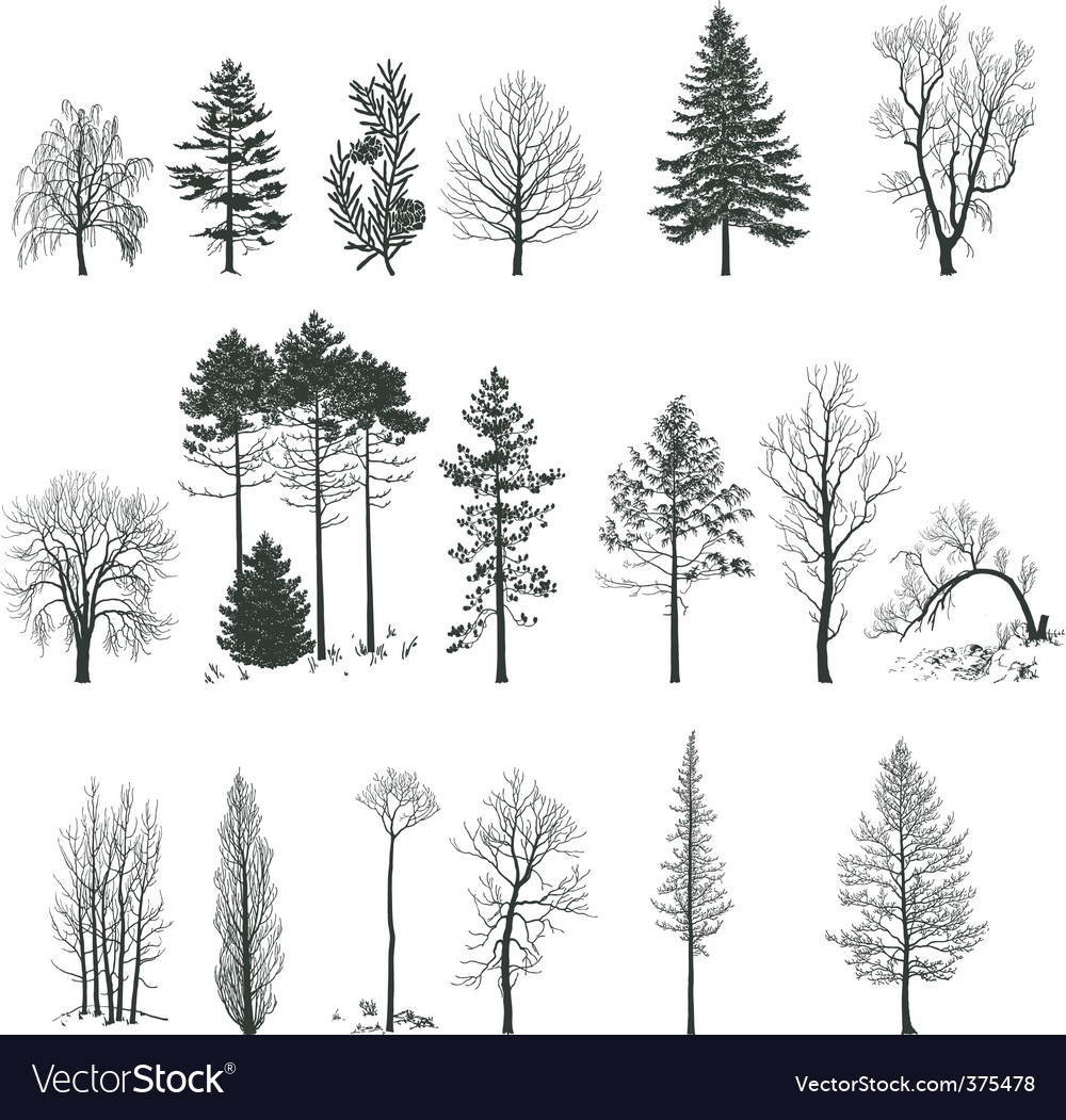 Tree silhouette collection vector | Price: 1 Credit (USD $1)