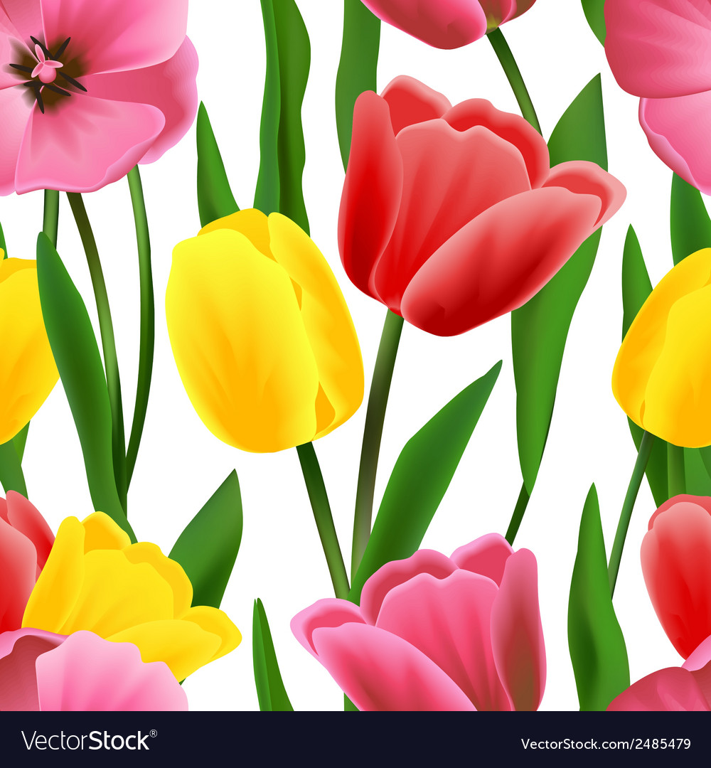 Tulip pattern seamless vector | Price: 1 Credit (USD $1)