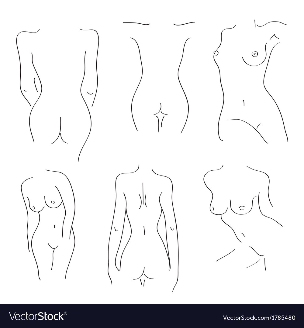 Silhouettes of naked girls on a white background vector | Price: 1 Credit (USD $1)