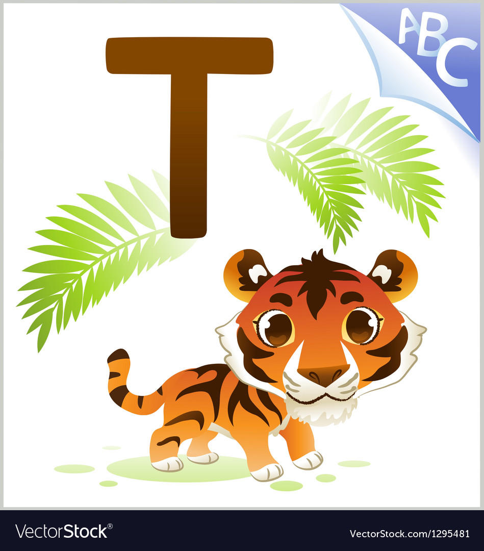 Animal alphabet for the kids t for the tiger vector | Price: 1 Credit (USD $1)