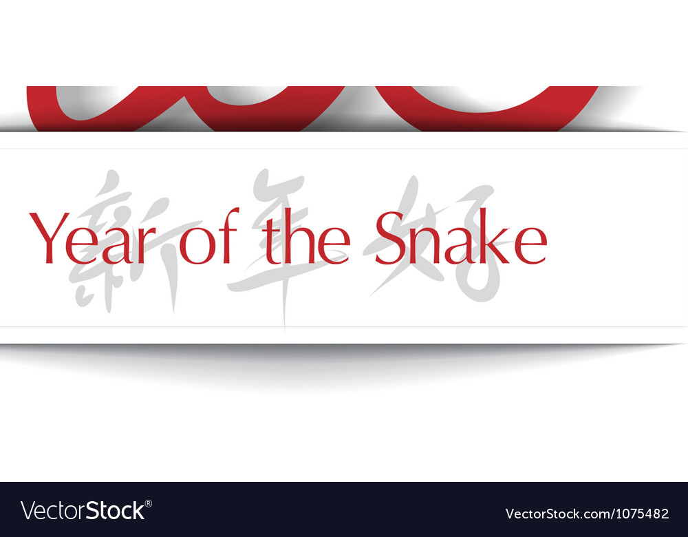 Year of the snake 2013 applique background vector | Price: 1 Credit (USD $1)